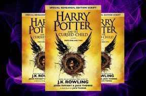 Flipkart Harry Potter delight