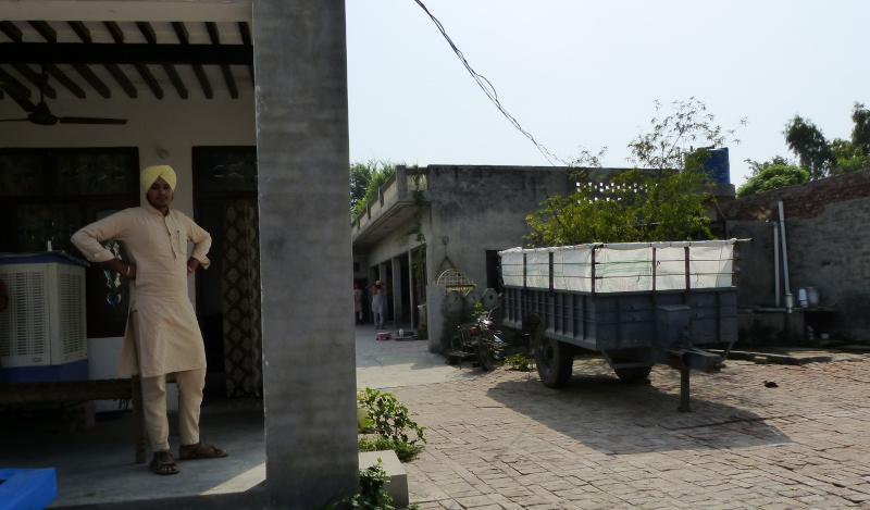 Makhu Punjab Flipkart